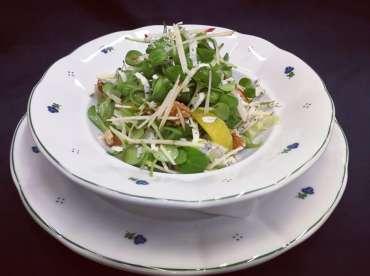Směs listových salátů s mikro slunečnicí a pomerančem.